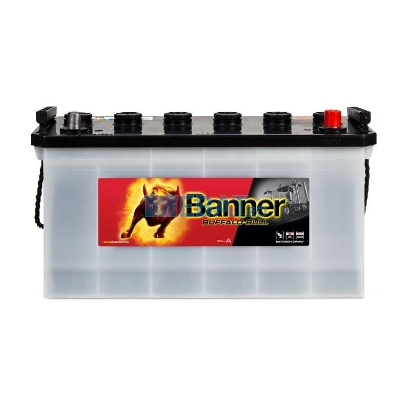 Baterie camion Banner Buffalo Bull 12V 100Ah 600A