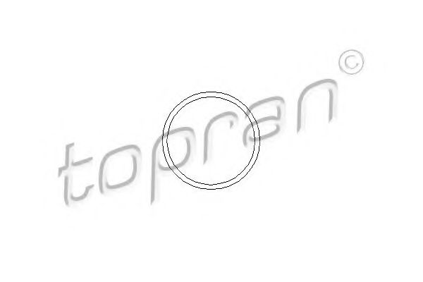 Garnitura, pompa de apa TOPRAN 202 290