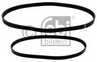 Set curea transmisie cu caneluri FEBI BILSTEIN 40860