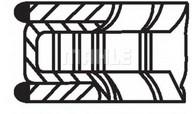 Set segmenti piston MAHLE ORIGINAL 627 39 N0