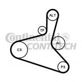 Set curea transmisie cu caneluri CONTITECH 6DPK1195K2