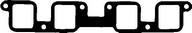 Garnitura, carcasa galerie admisie REINZ 71-52963-00